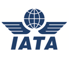 IATA November passenger traffic analysis